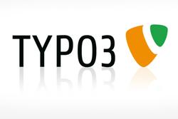 Webseiten mit TYPO3